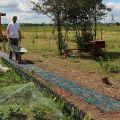 Садовая дорожка из пластмассовых плиток