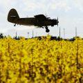 Авиаобработка посевов рапса пшеницы.  Авіаобробка