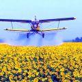 Услуги по внесению инсектицида бискайя самолетом Ан-2